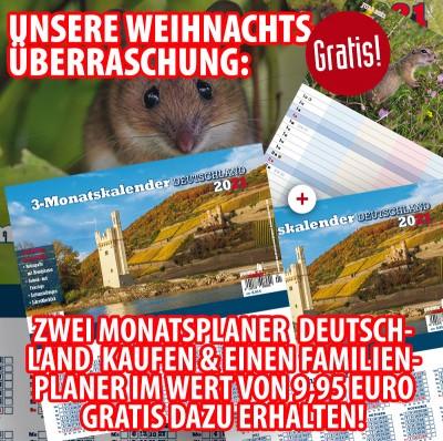 Bundle! »Zwei 3-Monatsplaner Deutschland 2021« + gratis »Familienplaner 2021