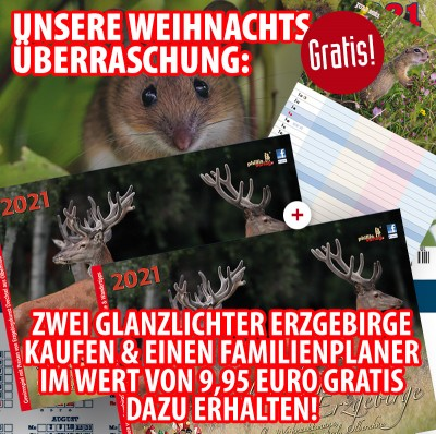 Bundle: Zwei Glanzlichter Erzgebirge 2021 + gratis Familienplaner 2021