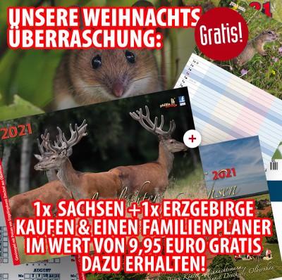 Bundle: Ein Glanzlichter Sachsen + ein Glanzlichter Erzgebirge 2021 + gratis Familienplaner 2021