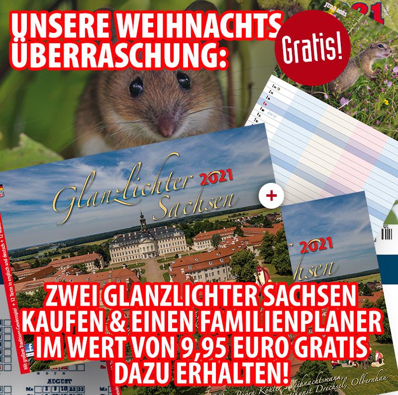 Bundle: Zwei Glanzlichter Sachsen 2021 + gratis Familienplaner 2021