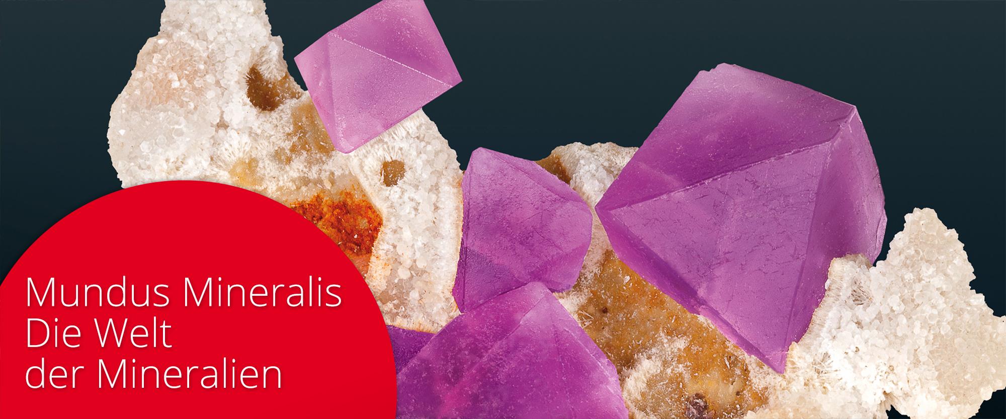 Banner - Terra Mineralia